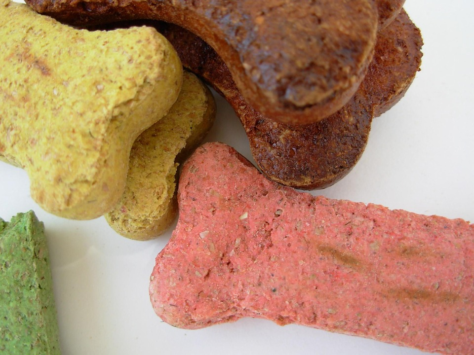 dog bones 350092 960 720 - 3 Yummy Doggy Treat Recipes Your Pooch Won't Refuse